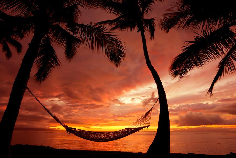 Hammock On A Sunset By KokoShadow