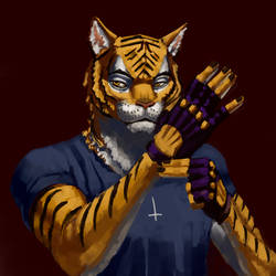 Tiger Bro Finale