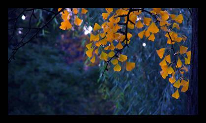 autumn again by TearsOfTheNight