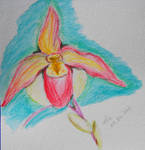 Watercolour Orchid 1