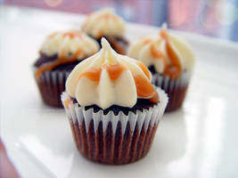 Mini Guinness Cupcakes