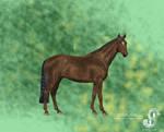 Metamorphoses Redo_ Horse