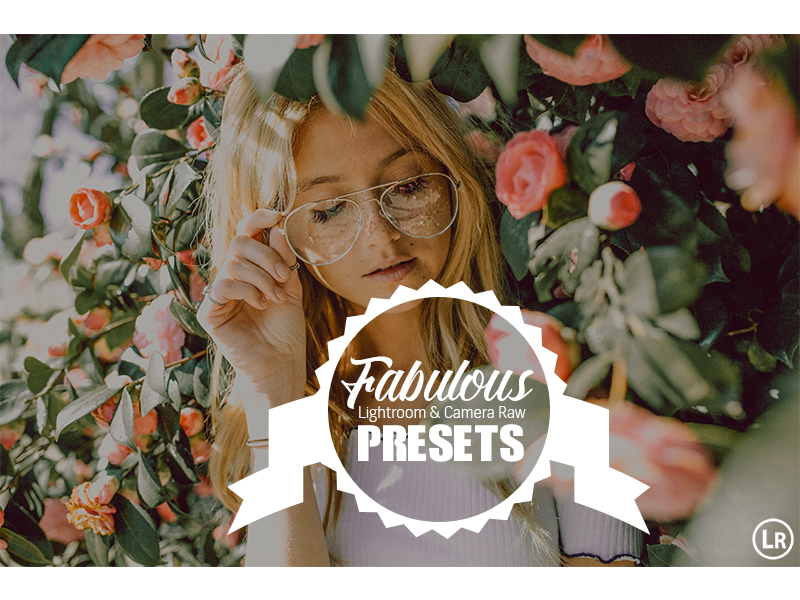 35 Fabulous Collection Presets Lightroom and ACR by hubafilter