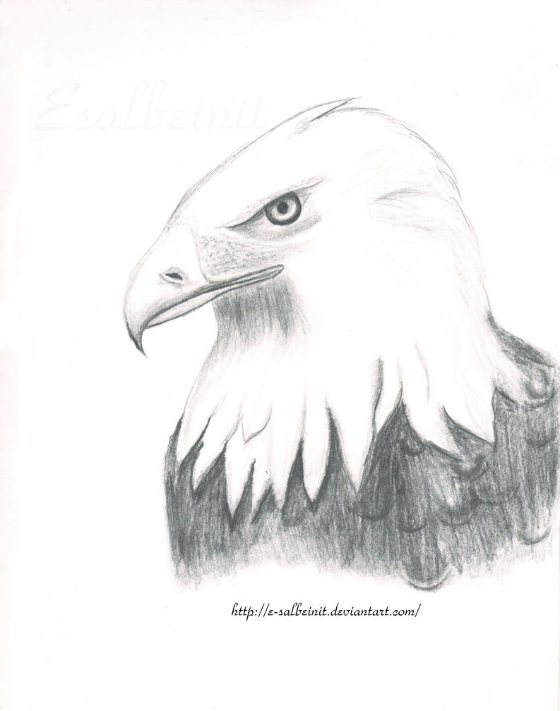 Eagle by E-salbeinit