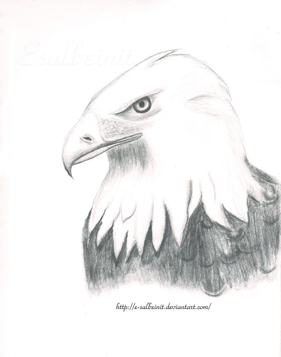 Eagle by E-salbeinit
