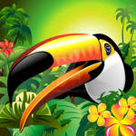 Toucan Close Up on the Jungle