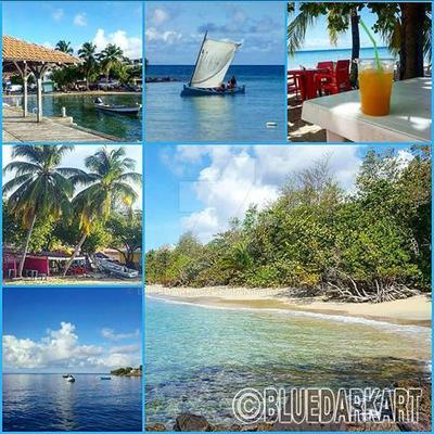 Little Glimpses of Sainte Luce - Martinique by Bluedarkat