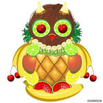 Owl Juicy Fruits  Vector Illustration