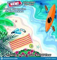 Beach Drone View - Vector Copyright BluedarkArt