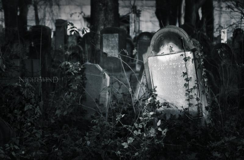 ^ by NightAndWind