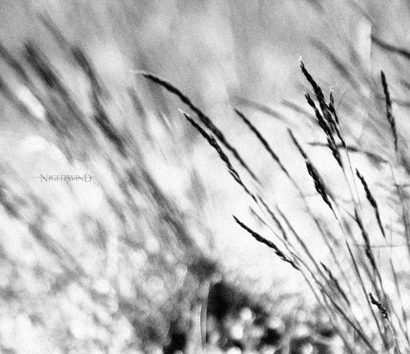 Wind.... by NightAndWind