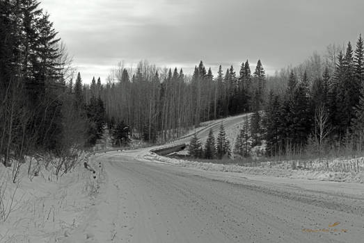 Down a Winter Road