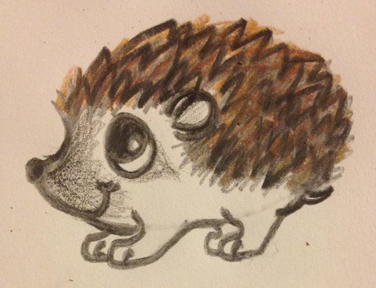 Baby Raccoon Mask Hedgehog :D by ninjarawr55 on DeviantArt Raccoon Drawing Easy