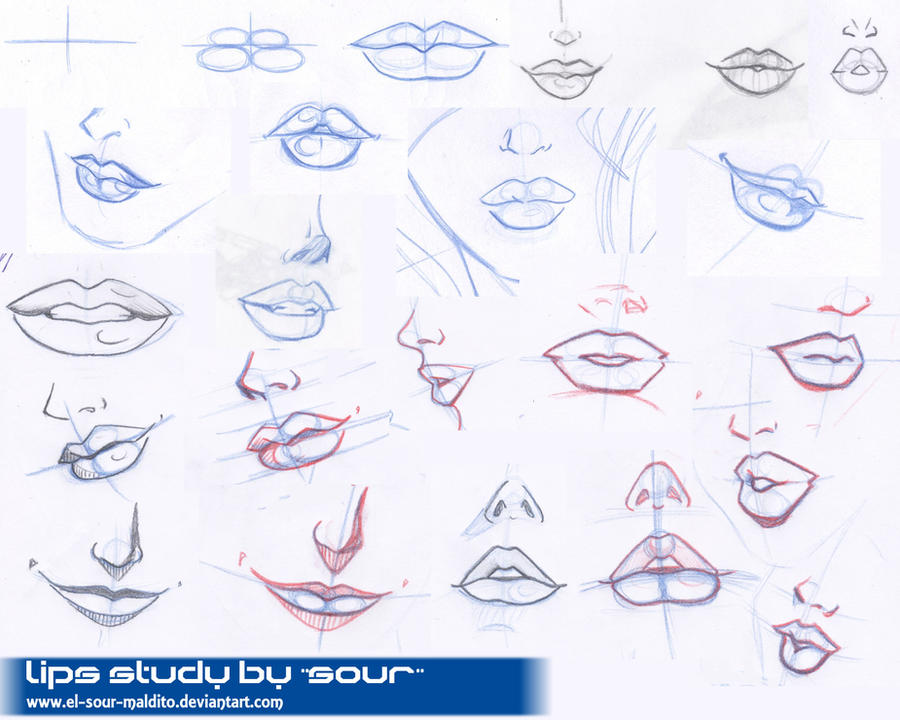 lips study by el-sour-maldito
