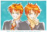 Harry Potter-Weasley Twins