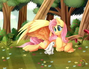 Fluttershy in the Forest