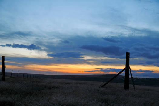 Pasture sunset