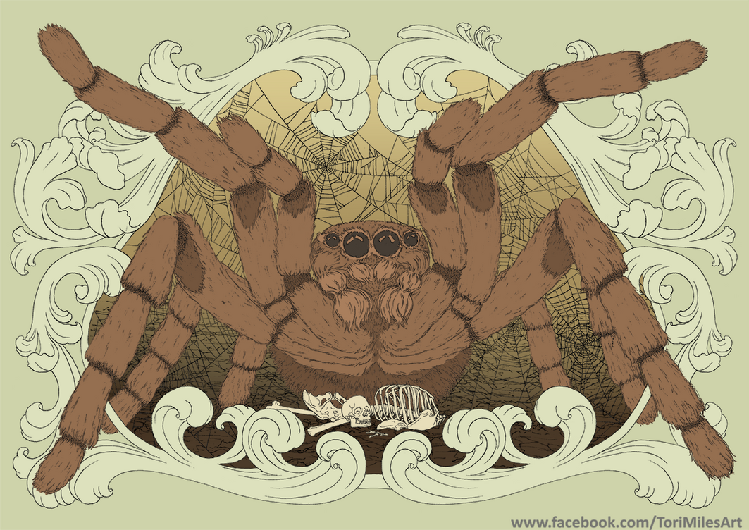 Tarantula by Victoria-M