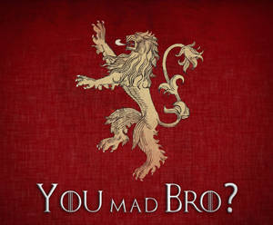 Lannister House, 3-0!!!