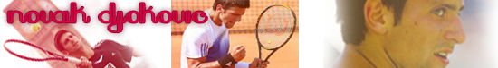 Novak Djokovic Banner by scarferdesign