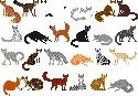 Warriors Pixels by Hoxau