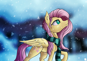 The Depth of Winter by SiMonk0