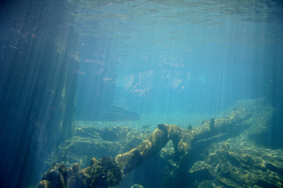 Underwater stock by Ameliorator