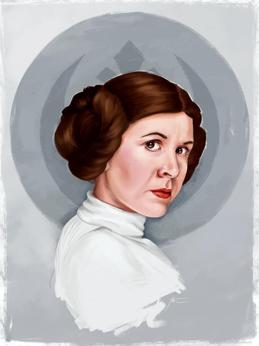 Princess Leia by amandathompson