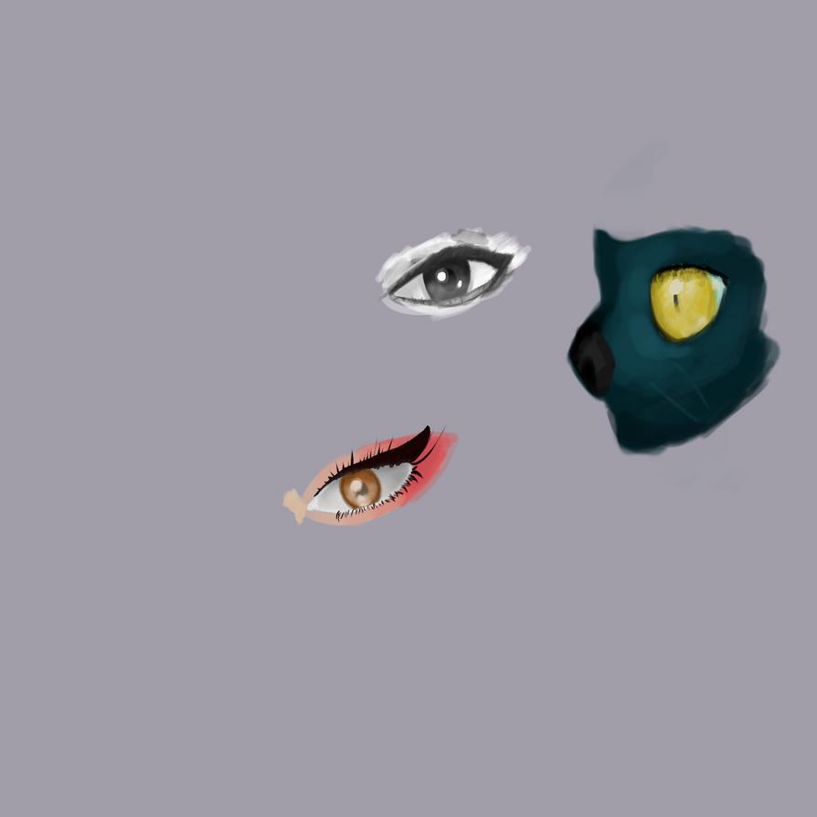 Eye Variations by felipetavares
