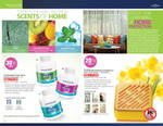 Spread for June Brochure 2013 Home Care 3