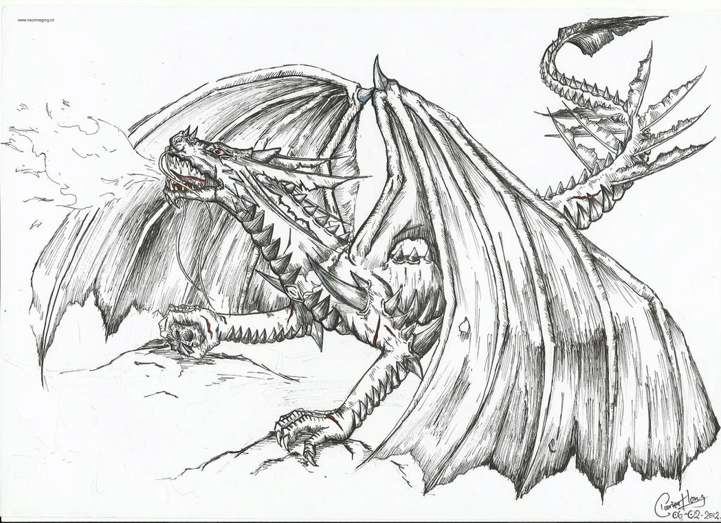 The Fire-breathing Dragon by dino-wolfEasy Fire Breathing Dragon Drawings