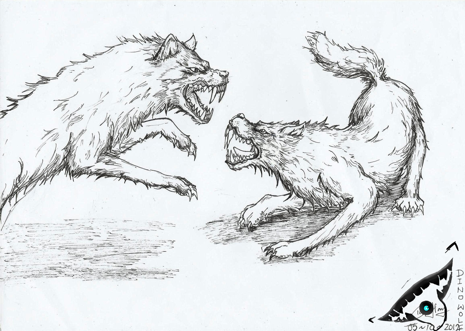 fighting wolf drawings displaying 20 images for fighting wolf drawingsFighting Wolf Drawings