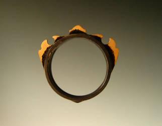 Morning Star Ring III by ilkela