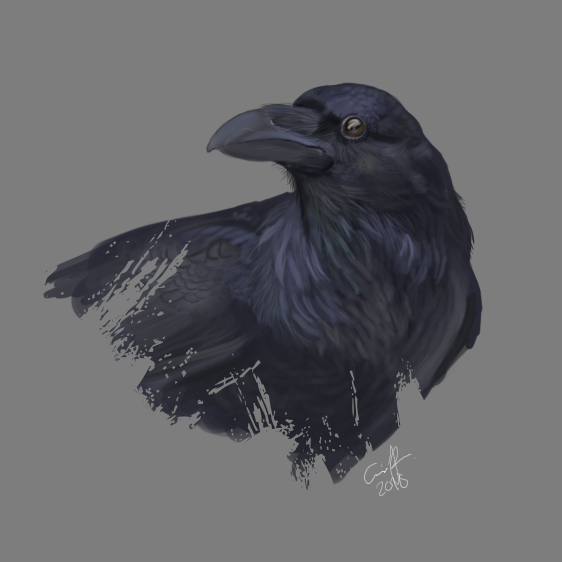 Raven by Viippu