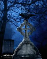 Grave Raven by RobAndersonJr