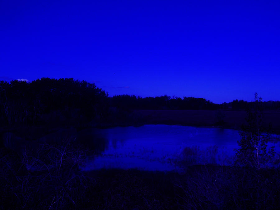 Premade Pond At Night Stock By Nahuale11 On Deviantart
