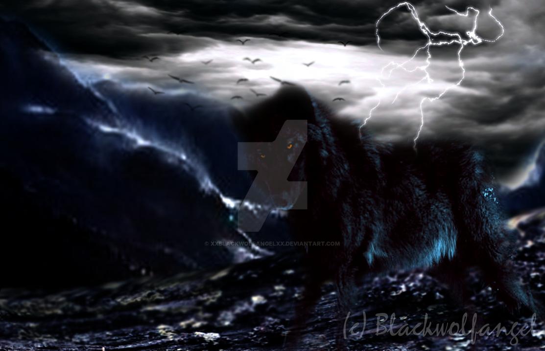 Black in Storm by xXBlackwolfangelXx