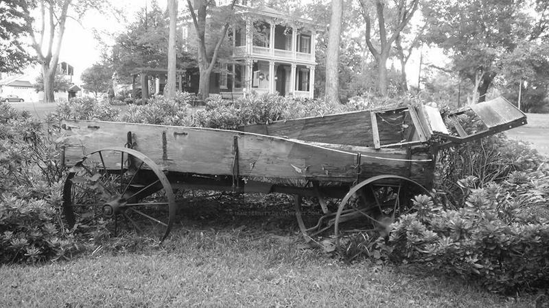 Wagon by IamEternity