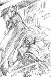 batman and robin V2