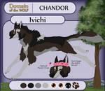 DotW Application: Ivichi