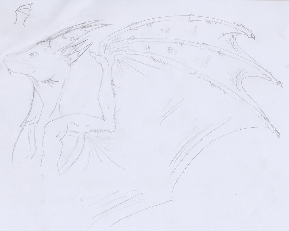 157) Dragon sketch by Magicull-Delesia