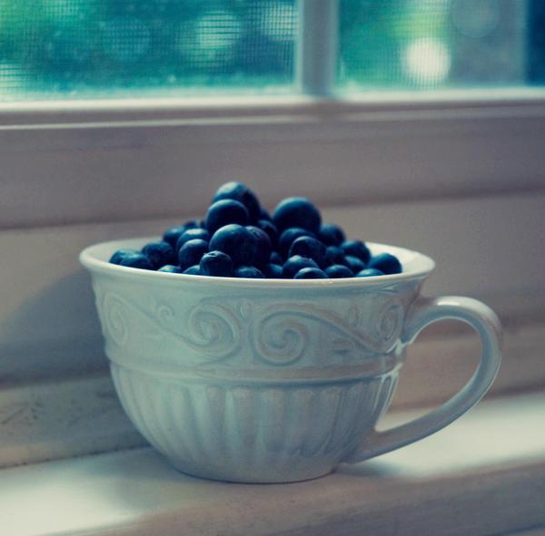 blueberry tea by Zaratops
