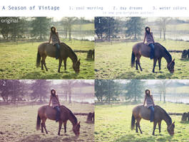 A Season of Vintage