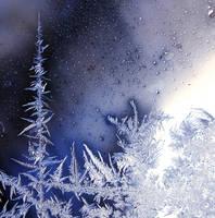Frozen by JanKacar