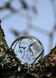 Tree Fortune-teller by JanKacar