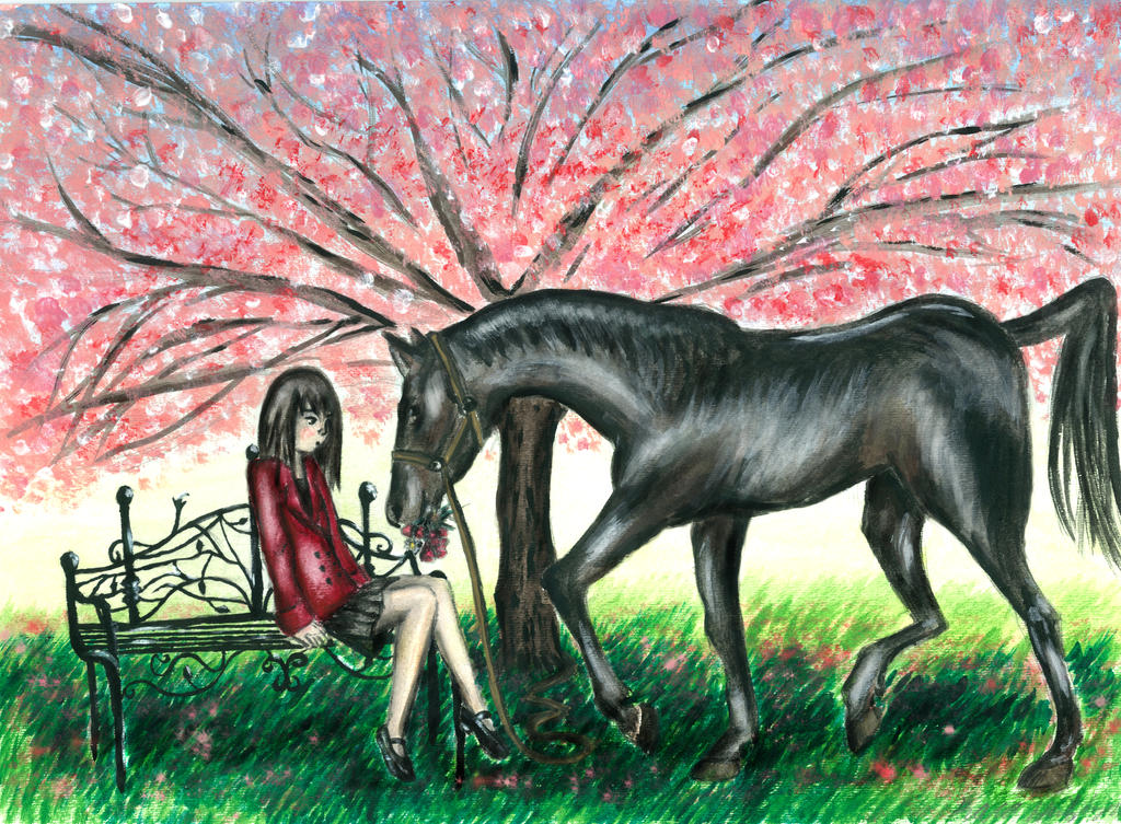 black horse and the cherry tree - 1024×753