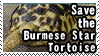 Save the Burmese Star Tortoise by ClockworkStamps