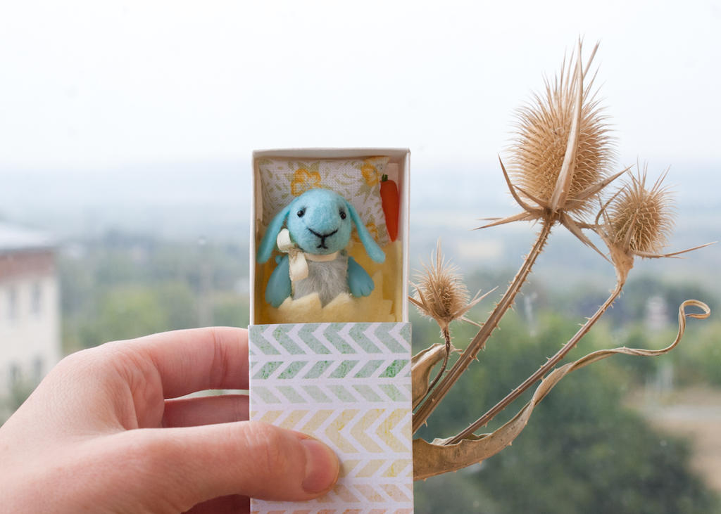 blue bunny in a matchbox by freedragonfly