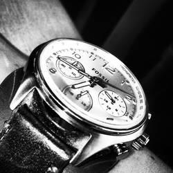 Fossilwatch by EnNaS