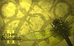 Coheed Wallpapers: II